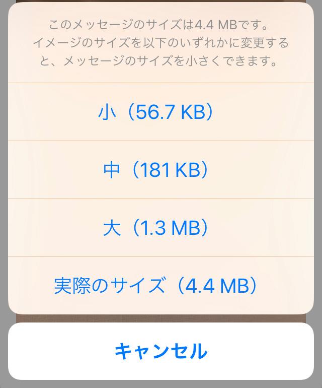 メール送信時のサイズ変更画面