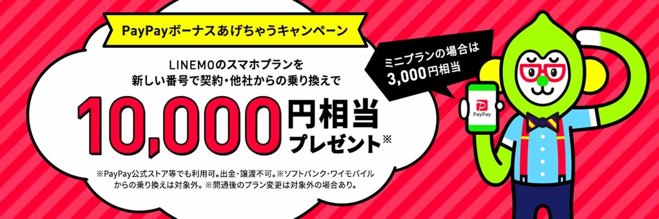 paypayキャンペーンイメージ